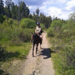 Travel Diaries: Horseback riding in Kelowna (Pegasus Riding School & Trail Rides)