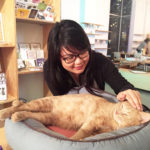 Cat + Cafe = A visit to the Catfe